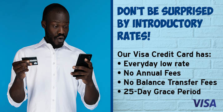 Don't be surprised by introductory rates.  Our Visa credit card has everyday low rates, no annual fees, no balance transfer fees, and a 25 day grace period.